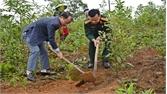 Tân Yên: Phấn đấu mỗi xã, thị trấn có 1 hàng cây, 1 vườn cây mang tên cựu chiến binh