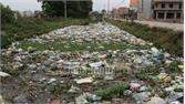 Lục Nam: Rác thải lại ngập kênh Yên Lại