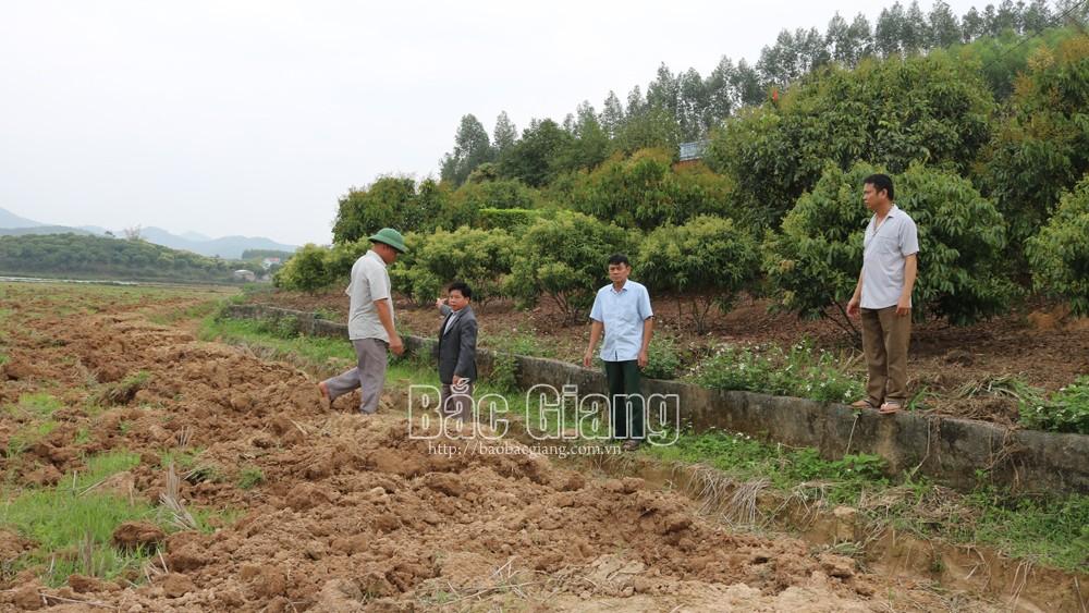 Xã Tam Dị (Lục Nam): Người dân bức xúc vì nghĩa trang sát khu dân cư