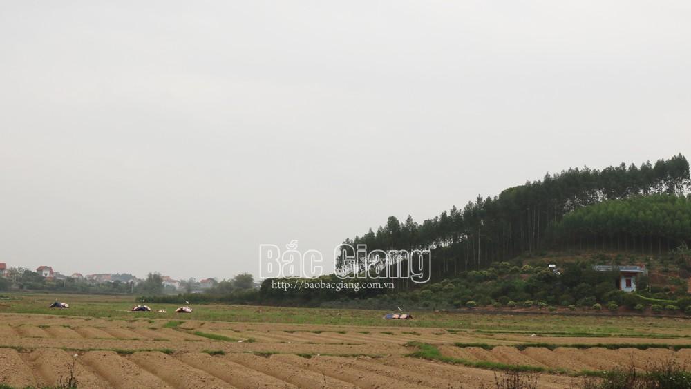 Xã Tam Dị, Lục Nam, Người dân, bức xúc, vì nghĩa trang, sát khu dân cư, môi trường