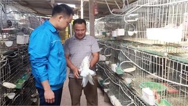 Thanh niên Bắc Giang khởi nghiệp từ nông sản an toàn