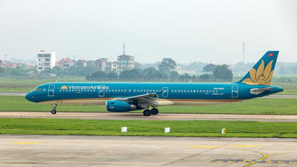 Airlines, domestic flights, travel, tourism demand