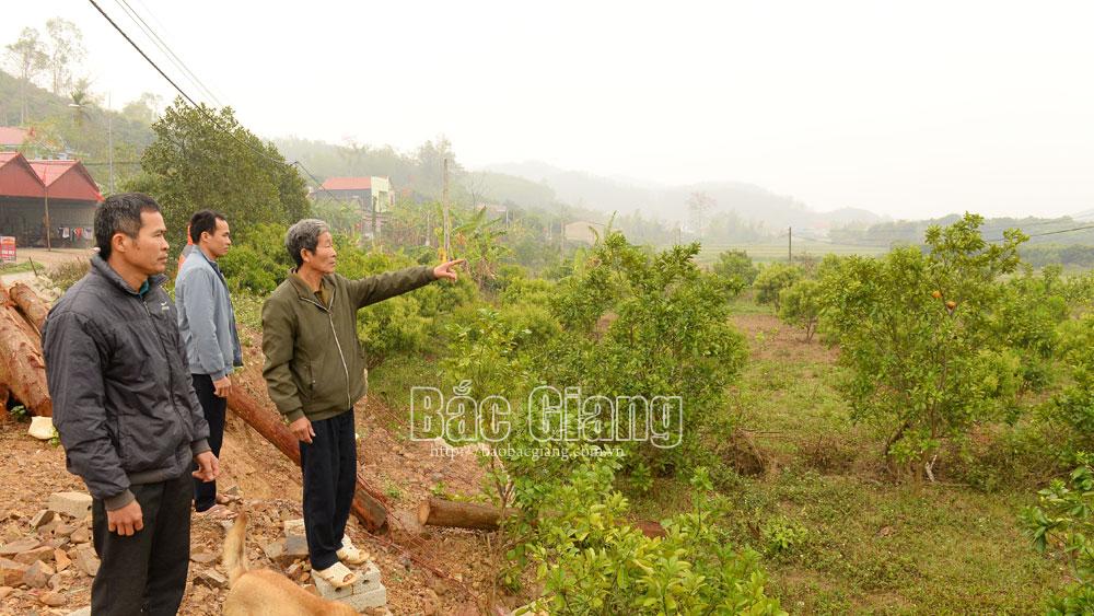Lục Ngạn: Quy hoạch, xây dựng khu dân cư mới bảo đảm hài hòa lợi ích