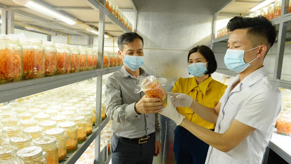 Lãnh đạo HND tỉnh và huyện Lục Nam thăm mô hình trồng nấmcủa anh Ong Thế Dũng (ngoài cùng bên phải).