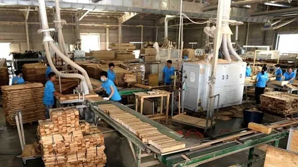Forestry exports up 41.5% in Q1
