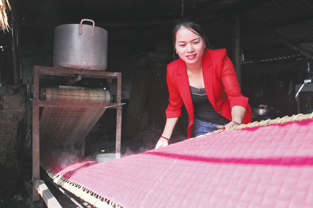 Unique root and vegetable noddles, Bac Giang province, Nam Duong commune, traditional craft village, years of experience, Chu rice noodle
