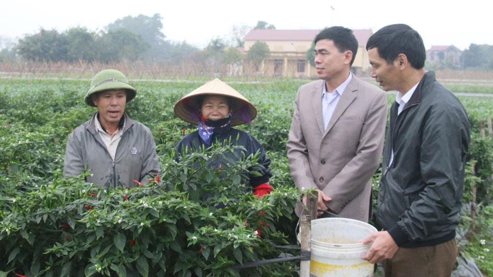 Bắc Giang, Quản lý đảng viên, sinh hoạt chi bộ
