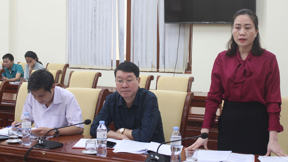 giám sát; bầu cử; Sơn Động; Bắc Giang