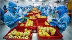 Fruit, vegetable exports bounce back in Q1