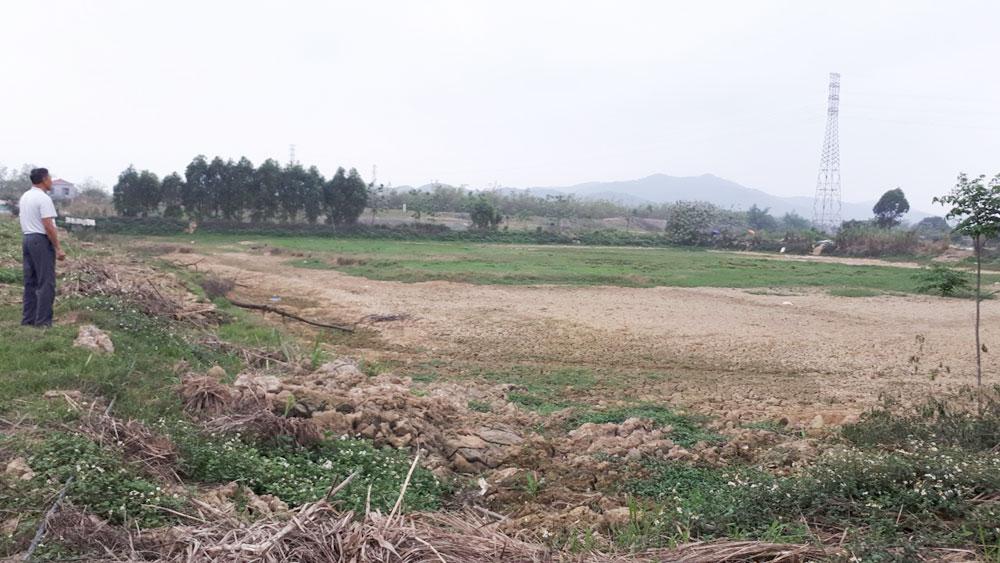 thôn Xuân An, xã Xuân Phú, Yên Dũng, Bắc Giang, chuyển nhượng đất , pháp luật, dồn điền đổi thửa