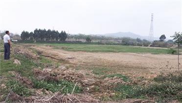 Thôn Xuân An, xã Xuân Phú (Yên Dũng): Chuyển nhượng đất có đúng pháp luật?