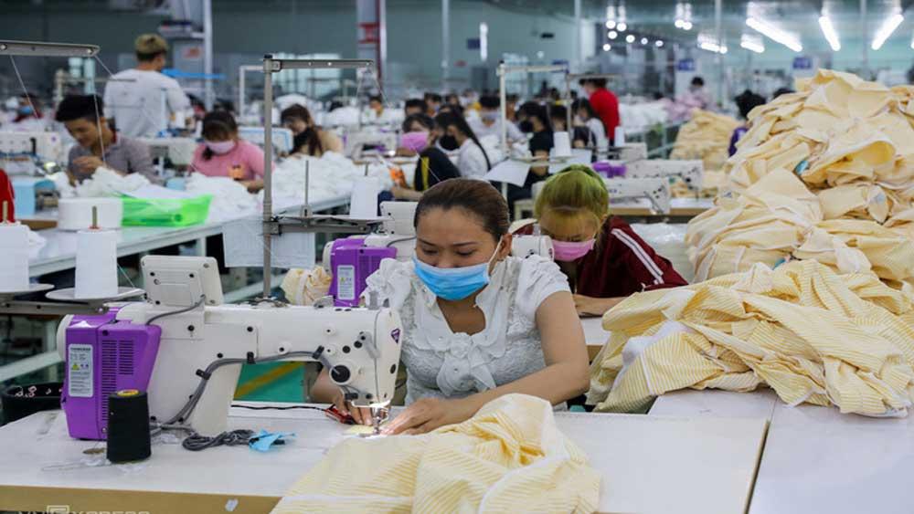Doanh nghiệp Việt, hai năm thực thi CPTPP,