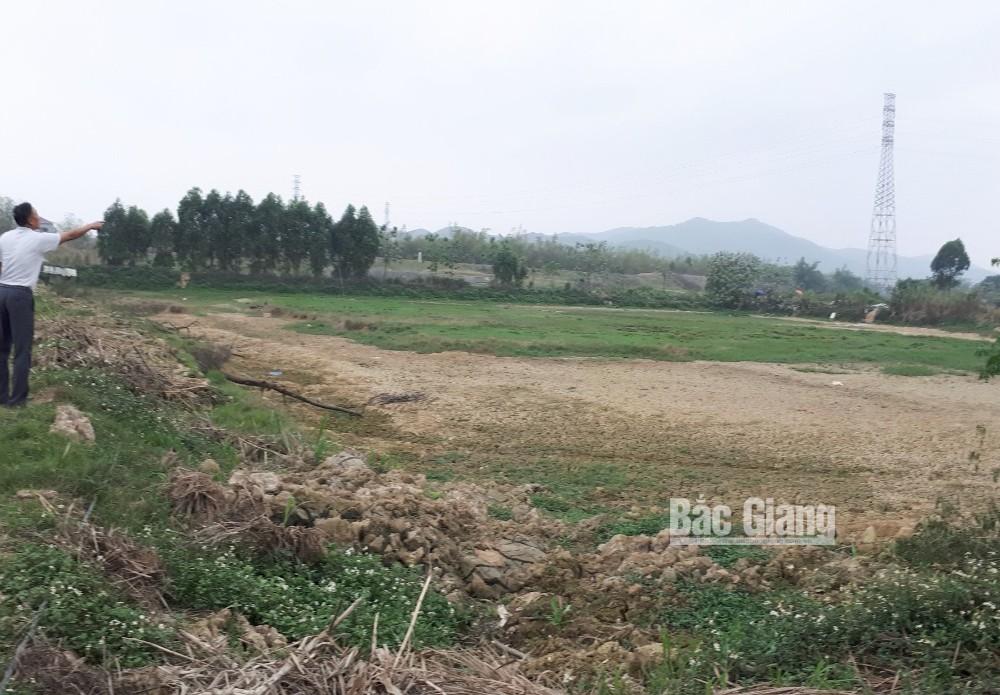 Huyện ủy Yên Xuân, dồn điền đổi thửa, Xuân An, Xuân Phú