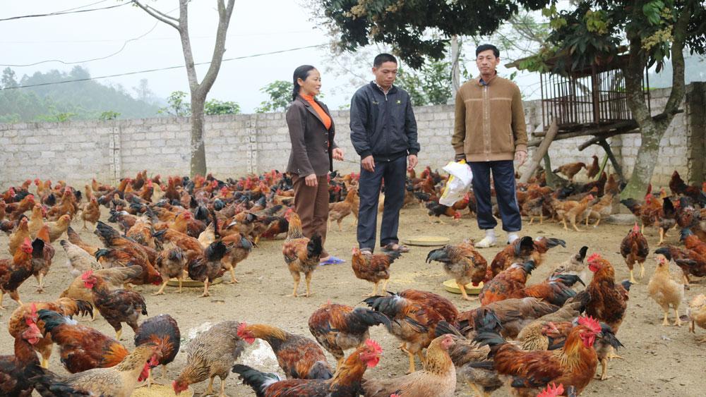 Dân vận khéo, đảng bộ, Huyện ủy Yên Thế, Bắc Giang, Hiệp Hòa