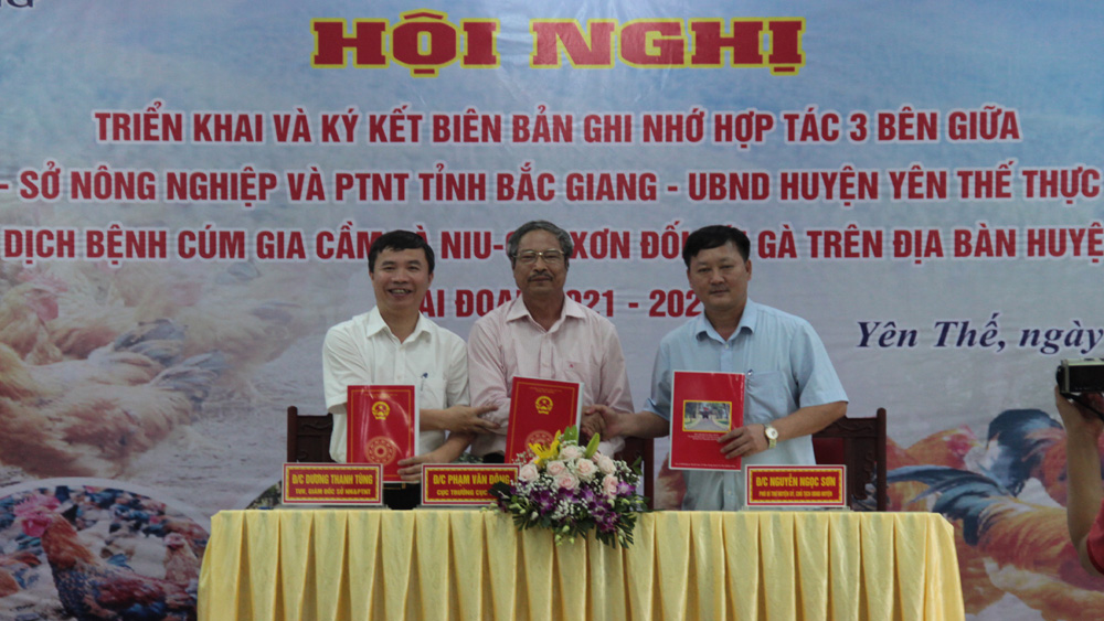 Bac Giang province, poultry disease free area, Yen The district, Department of Animal Health, memorandum of understanding, safe products