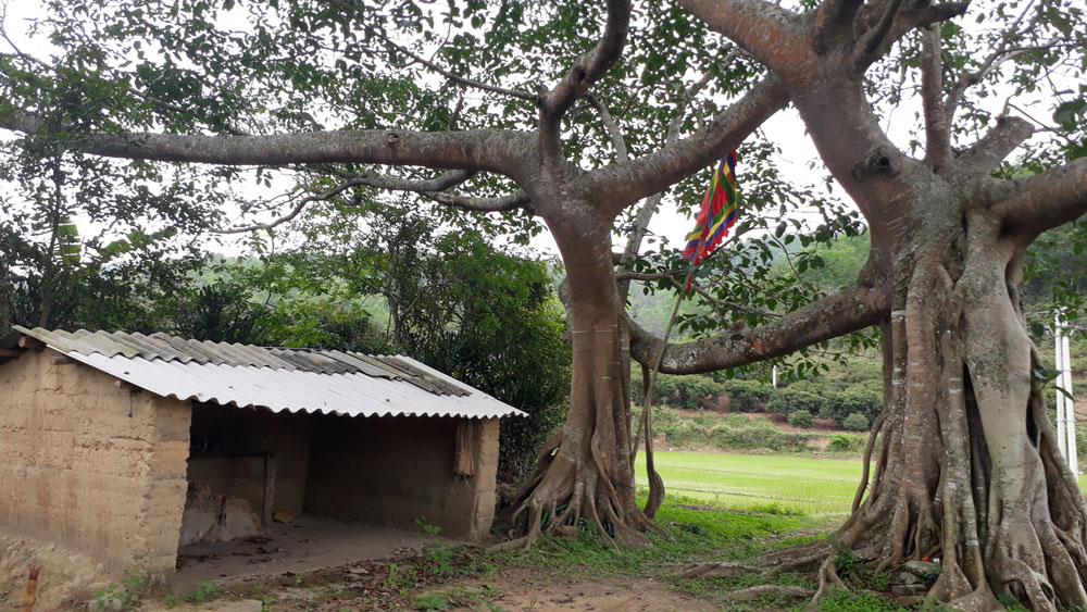Culture of Nung ethnic people in Bac Hoa village