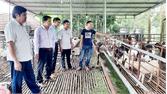 Đồng hành cùng hội viên nông dân