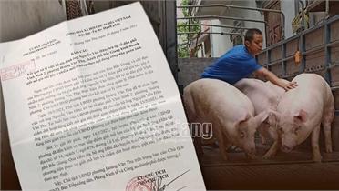 TP Bắc Giang: Chấm dứt hoạt động lò mổ trái phép