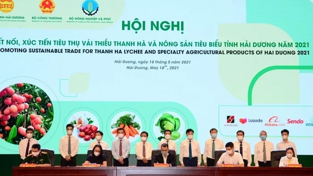 Hai Duong promotes consumption of Thanh Ha lychee, specialty agricultural products