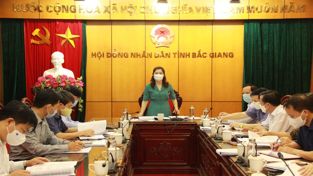 Đảng đoàn, HĐND tỉnh, thẩm tra, một số, dự thảo, báo cáo, nghị quyết
