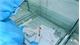 Vietnam records 42th coronavirus death