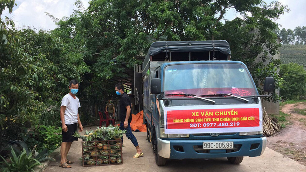 Bac Giang connects to help sell farm produce in pandemic hit areas