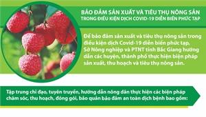 Bảo đảm sản xuất và tiêu thụ nông sản trong điều kiện dịch Covid-19