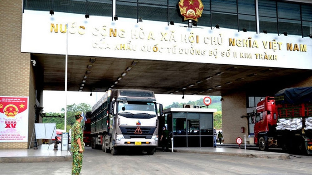 Over 500 tonnes of Bac Giang lychee exported via Lao Cai border gate every day
