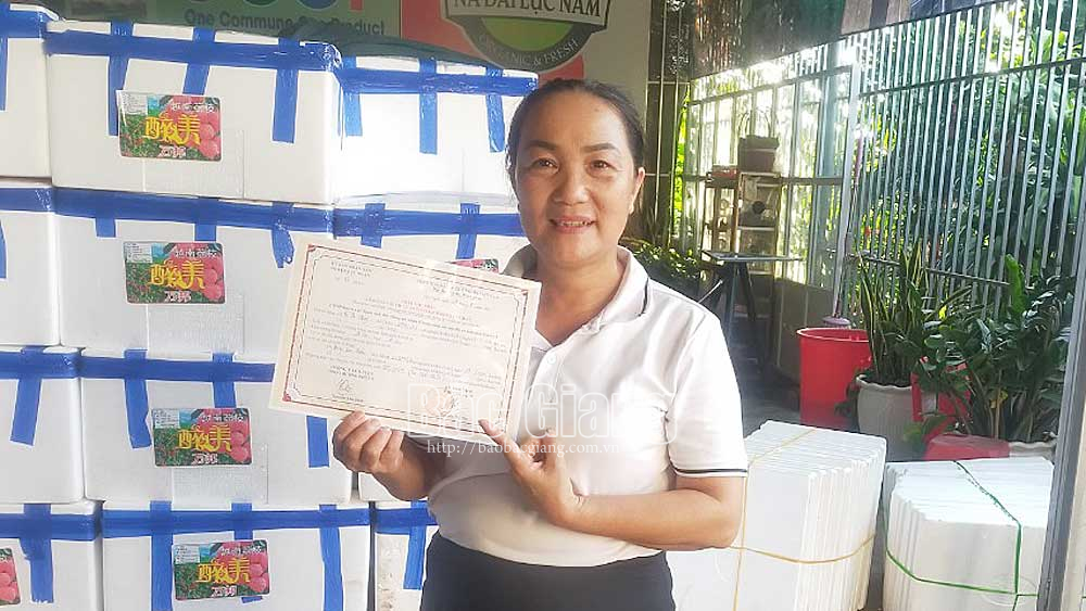 Luc Ngan grants more than 500 certificates of Covid-19 free lychee