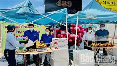 Trung tâm Xúc tiến thương mại nông nghiệp bố trí 3 điểm bán vải thiều Bắc Giang tại Hà Nội