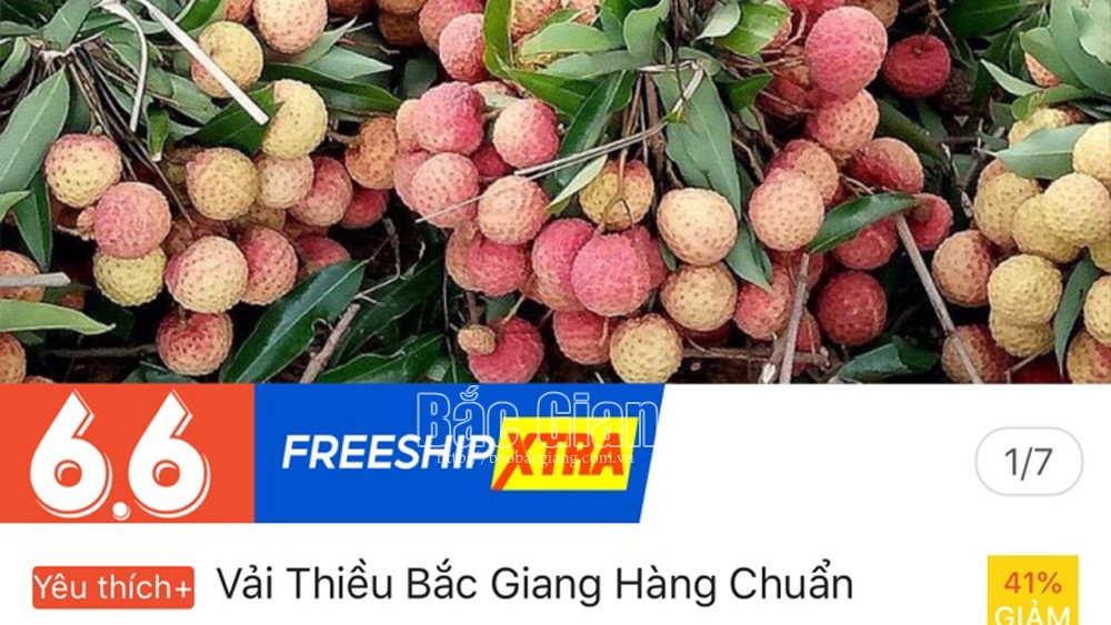 Bac Giang lychee sold at 6 e-commerce platforms
