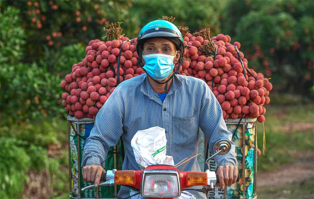Công an huyện Lục Ngạn, leo đồi, đi thuyền, nông dân, thu hoạch vải