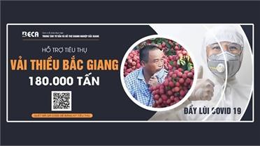 Hiệp hội DN tỉnh Bắc Giang xây dựng cổng thông tin hỗ trợ tiêu thụ vải thiều