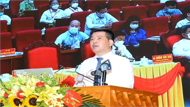 Bắc Giang: Trực tuyến xúc tiến tiêu thụ vải thiều với 30 điểm cầu trong nước và quốc tế