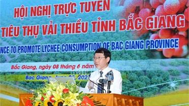 Chủ tịch UBND tỉnh Lê Ánh Dương: Bắc Giang cam kết tạo mọi điều kiện thuận lợi nhất cho tiêu thụ vải thiều