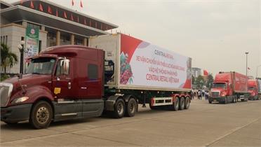 Bắc Giang: Sau trực tuyến xúc tiến thương mại, hàng loạt siêu thị lớn bán vải thiều