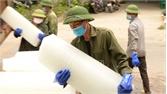 Lục Ngạn: Tập trung giải quyết thiếu đá cây cho tiêu thụ vải