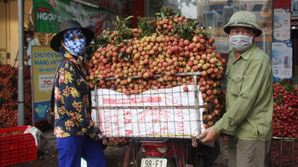 Bắc Giang:, vải thiều, vải Lục Ngạn, vải Bắc Giang, xuất khẩu vải sang Trung Quốc, cửa khẩu Lào Cai, cửa khẩu Lạng Sơnua các cửa khẩu tỉnh Lào Cai và Lạng Sơn