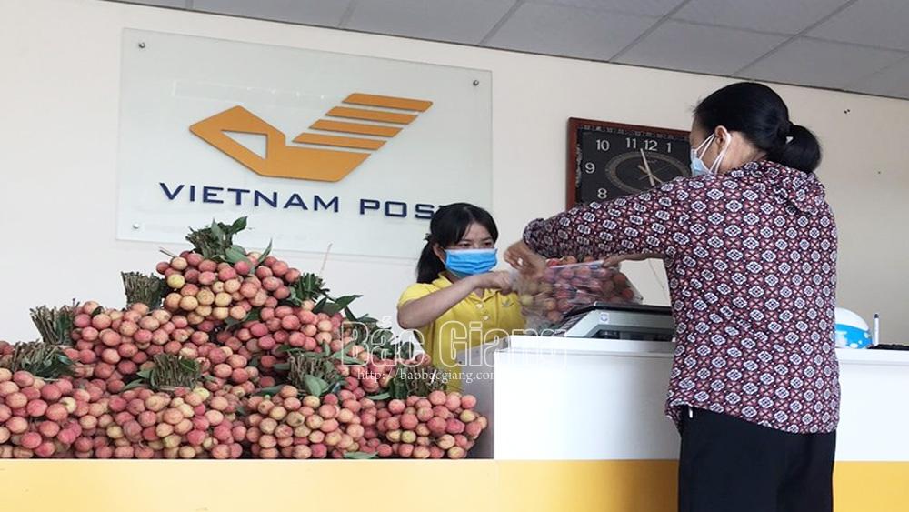 vải thiều, Bắc Giang, Bưu điện tỉnh Bắc Giang