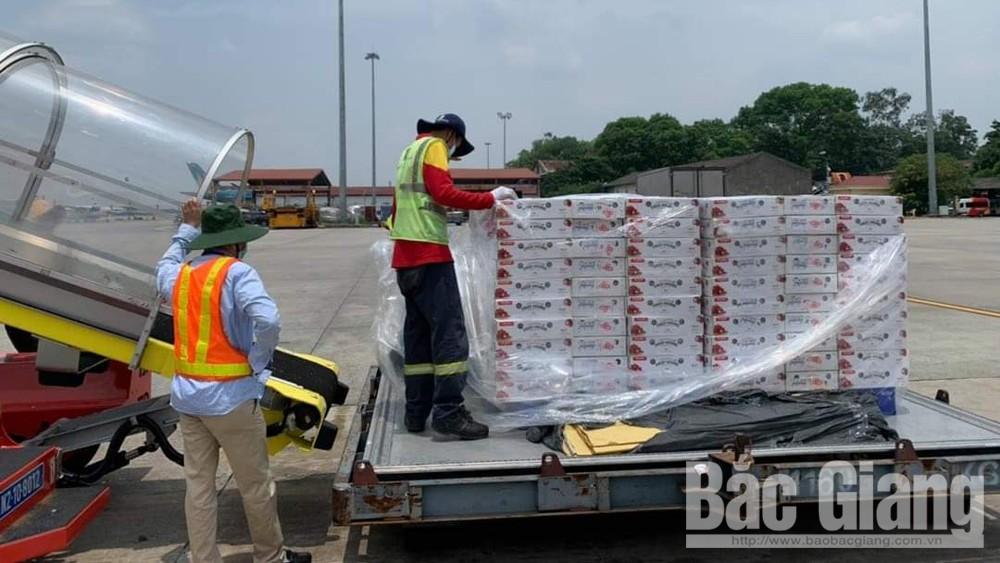 Vietjet Air, miễn phí, vận chuyển vải thiều, miễn phí 1 nghìn đơn, hàng hàng không, vải thiều Bắc Giang, tiêu thụ