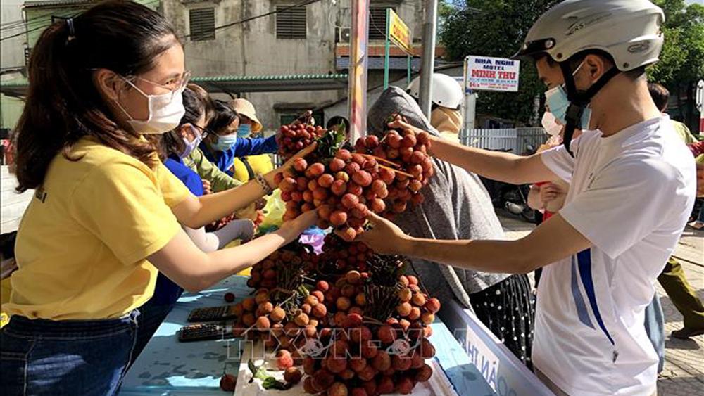 Vải thiều Bắc Giang, hỗ trợ tiêu thụ