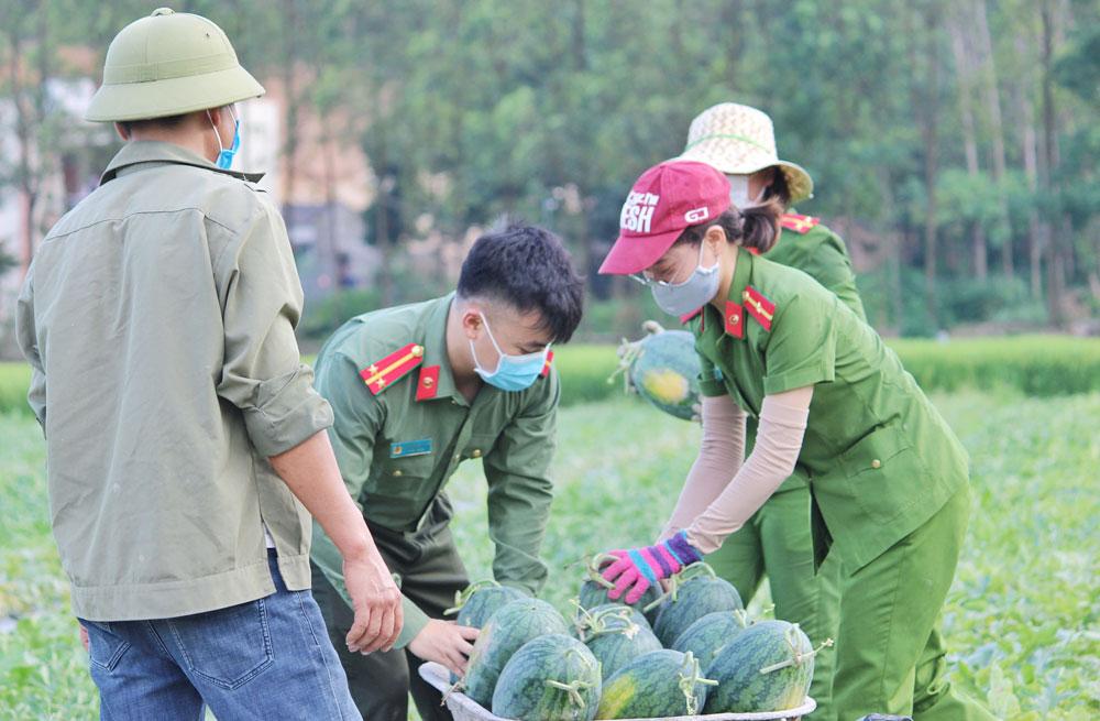 Công an huyện Yên Dũng, Bắc Giang,  Công an tỉnh, chống dịch, xuống đồng giúp dân