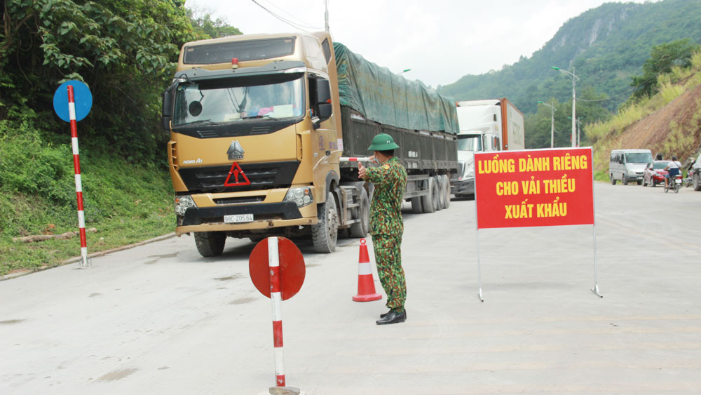 Transporting lychees, border gates, Bac Giang province, most favorable conditions, Tan Thanh Border Gate, green lane