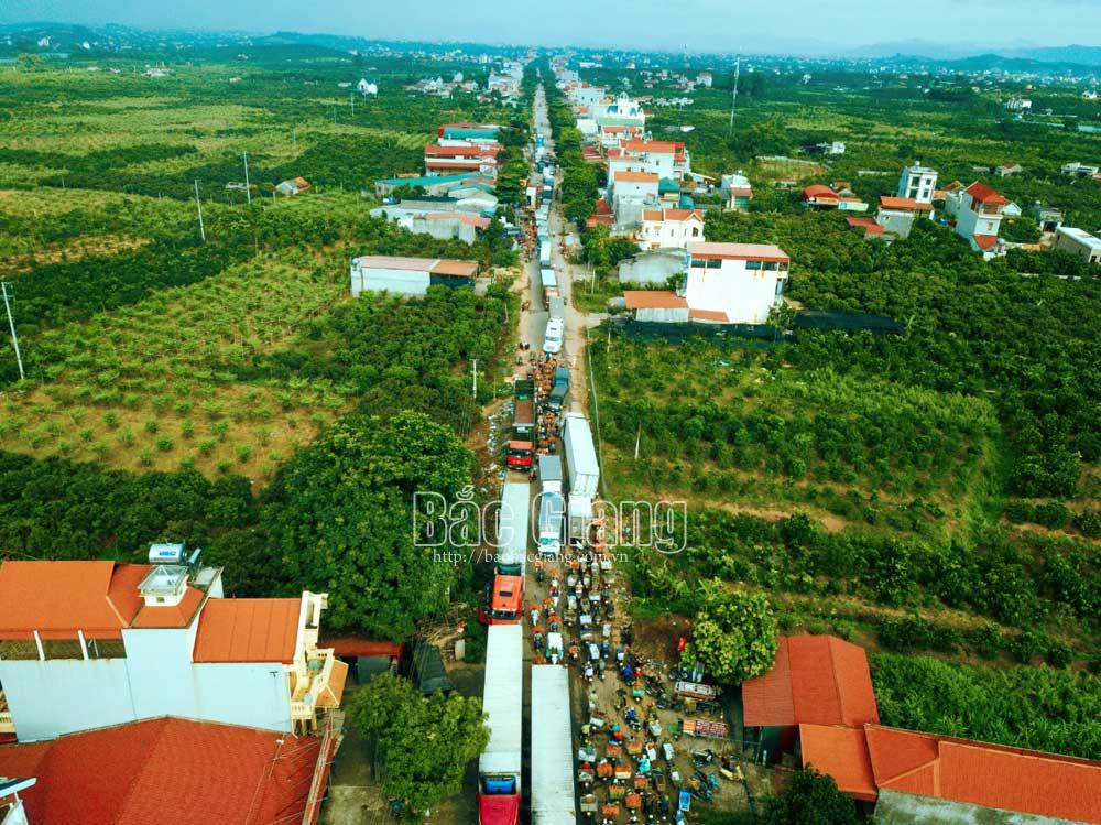 Đường về vùng vải thiều Lục Ngạn. Ảnh: Nguyễn Kế
