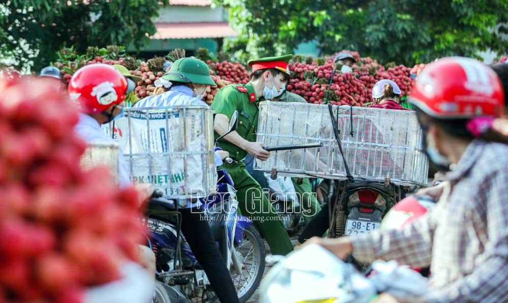 Công an giúp dân trong mùa vải bội thu. Ảnh: Nguyễn Kế