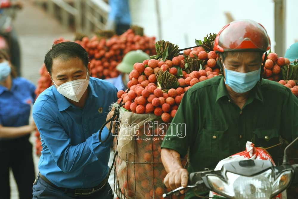 Cán bộ, công chức huyện Lục Ngạn tham gia giúp dân vận chuyển, tiêu thụ vải thiều. Ảnh: Hoàng Anh