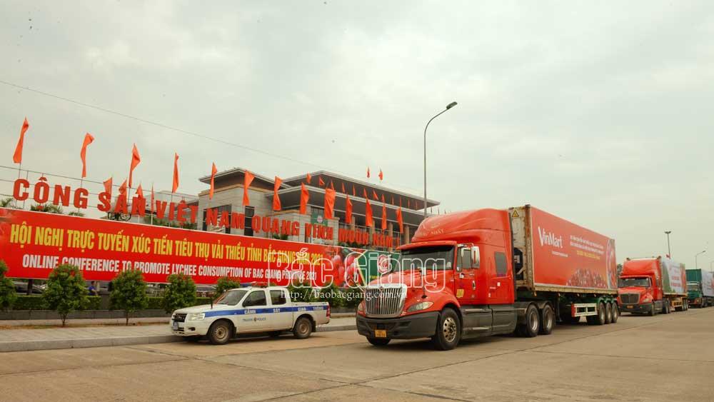 Đoàn xe xuất hành chở vải thiều xuất khẩu tại Hội nghị trực tuyến xúc tiến tiêu thụ vải thiều năm 2021. Ảnh: Thế Đại
