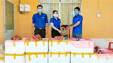 Bạc Liêu chung tay hỗ trợ tiêu thụ vải thiều Bắc Giang