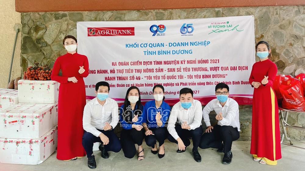 vải thiều, Đảng ủy Khối Doanh nghiệp tỉnh, Bắc Giang, vải thiều Lục Ngạn, hỗ trợ tiêu thụ