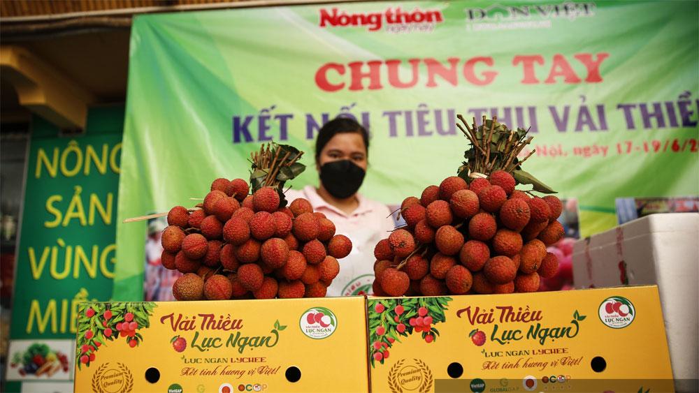 Trung tâm kết nối tiêu thụ nông sản; Hội Nông dân tỉnh Bắc Giang; vải thiều